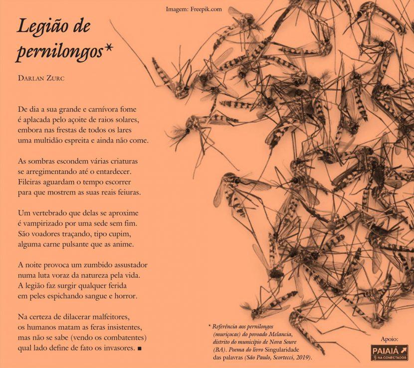 legiao-de-pernilongosSD